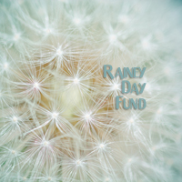 Rainey Day Fund